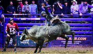 rodeo betting